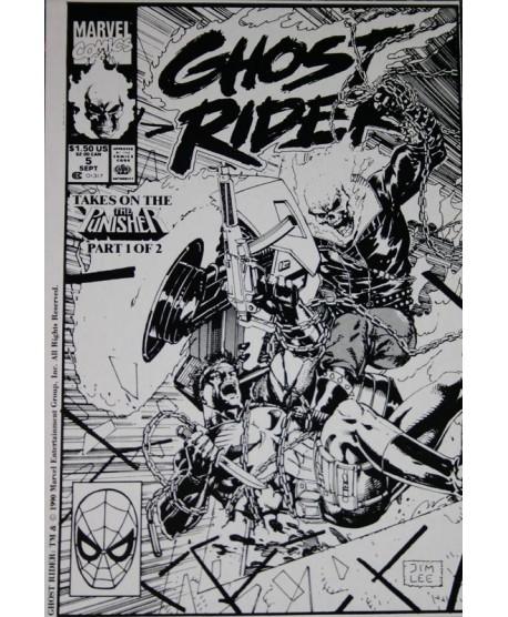 Ghost Rider vs. Punisher